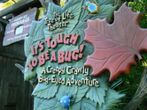 It's Tough to be a Bug! This is a fantastic, multidimensional movie experience