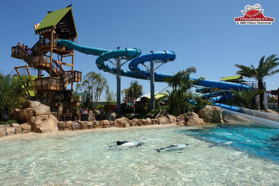Aquatica's signature attraction