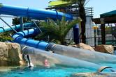 Sliding through a dolphin pool