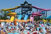 Aquatica sunbathers