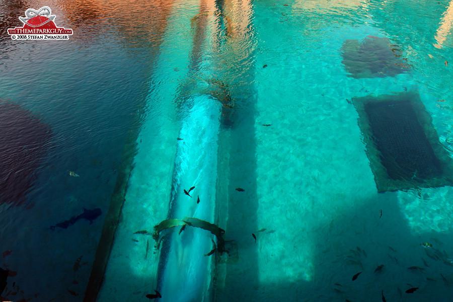 underwater water slide. Brilliant Slide Full Speed Through The Shark Tank You Wonu0027t See Anything For Underwater Water Slide