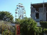 Ferris wheel behind the bushes