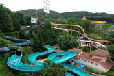Water park in the woods
