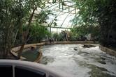 Indoor Jungle Cruise