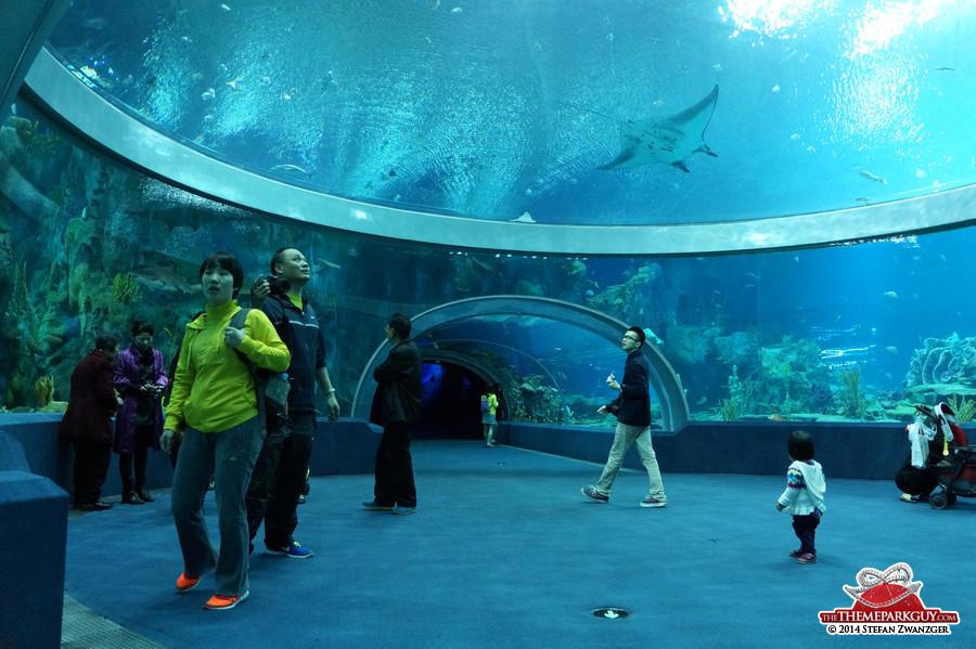 Chimelong Ocean Kingdom photos by The Theme Park Guy