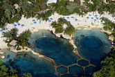 Discovery Cove dolphin pools