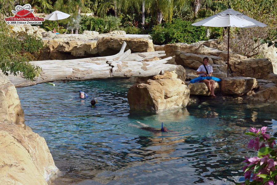 Discovery Cove pools