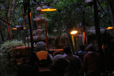Queue to the Indiana Jones ride
