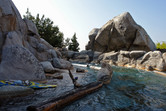 Grizzly River Run scenery