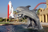 Dolphins and rockets, as well