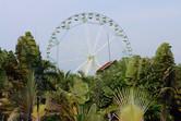 Enchanted Kingdom ferris wheel