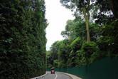 Sentosa road