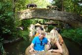 Gardaland's Jungle Cruise