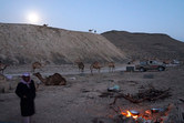 The groundedness of Bedouin life