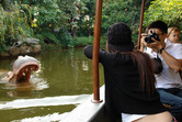 On the Jungle Cruise