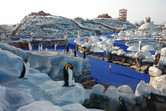 Ice Land Water Park in operation