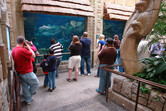 Aquariums inside Mandalay Bay