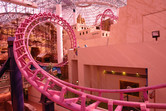 Adventuredome roller coaster