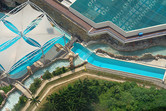 Lazy river meets dolphin pool