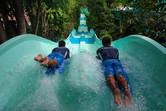 Mat racer slide through dense jungle