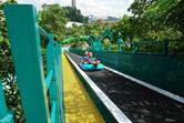 Conveyor belt up into the jungle