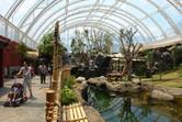 Inside the panda house