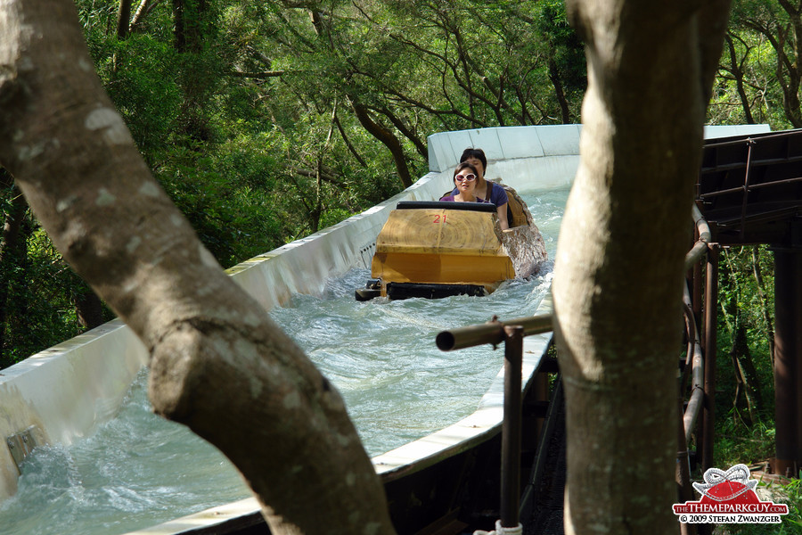Log flume ride in the woods