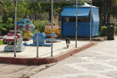 Parc Sindibad watchdog attack