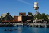 Warner Brothers theme park atmosphere