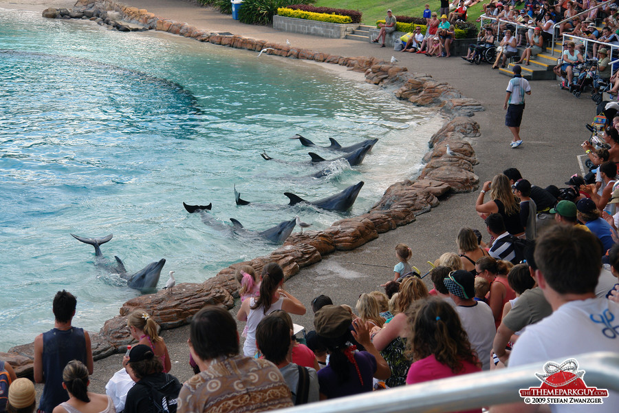 Sea World Australia Photographed Reviewed And Rated By