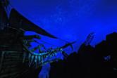 Stunning ceiling projections. Bravo, Disney Imagineers!