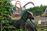 Coaster, construction and plastic zebras