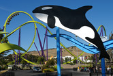 Roller coasters and killer whales