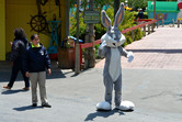 Bugs Bunny in action