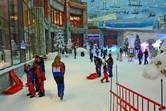 Ski Dubai visitors