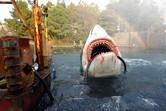 Shark attack with rainbow