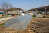 The last village before future Songsang Green City