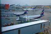 Moscow Sheremetyevo Airport with new Aeroflot fleet parked