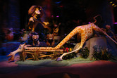 Animatronics inside the Madagascar Ride