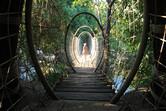 Hidden jungle paths