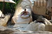 Water coaster sliders
