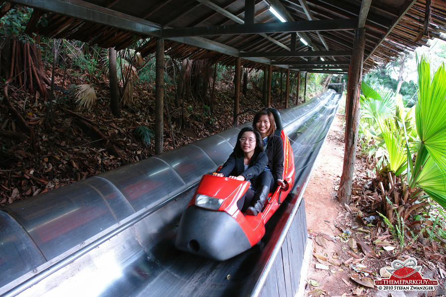 Bobsled ride through the jungle