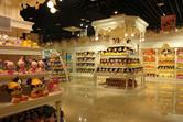 Fake Disney Store